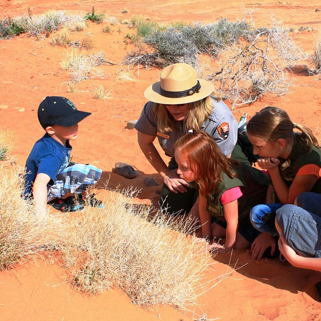 Ranger crouches in the desert with children in junior ranger vests