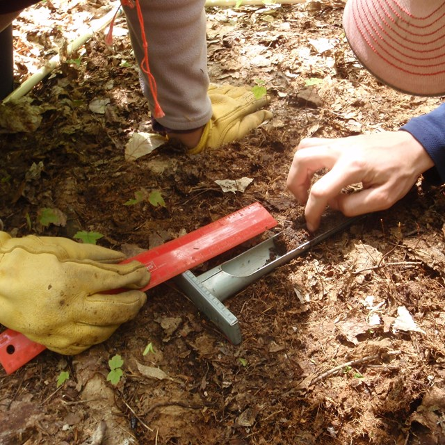 Taking a soil sample