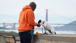 Man gives small white dog a treat on concrete ledge overlooking GG Bridge.