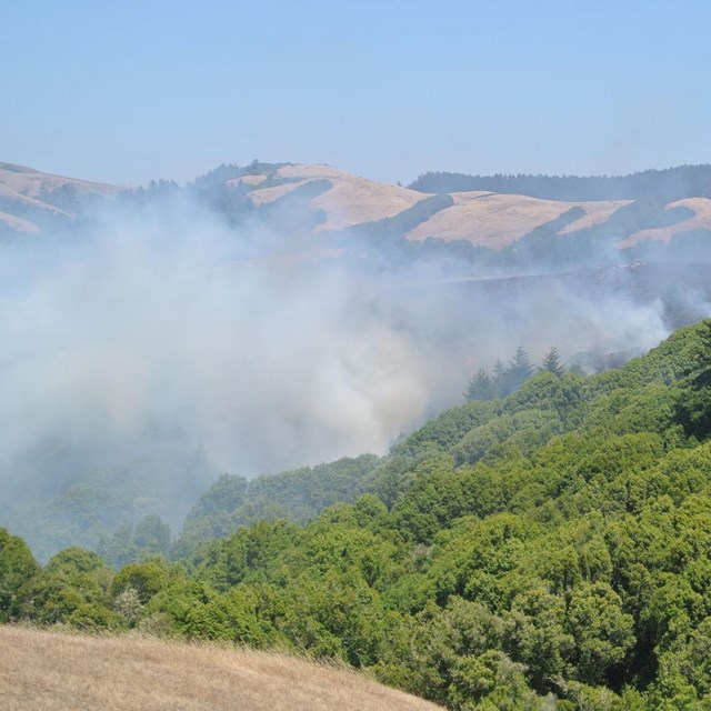Smoke from fire at Bolinas Ridge.