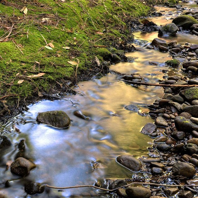 Image of rocky stream.