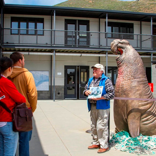 Docent educates visitors beside a massive statue of a bull elephant seal.