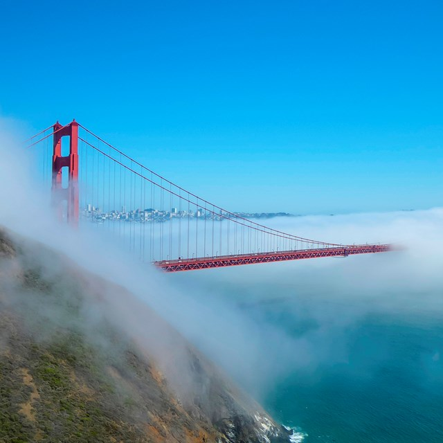 The golden gate bridge shrouded in fog, extending from behind a green cliffface.