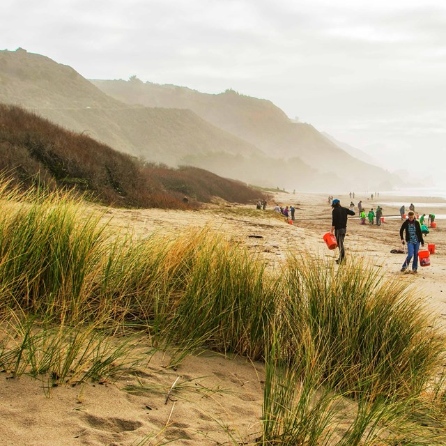 People cleaning up Stinson Beach