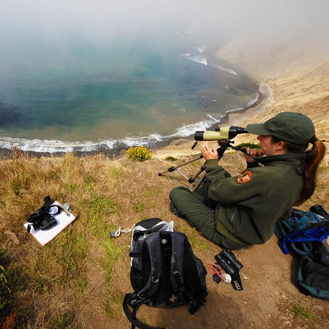 Researcher collects data on the edge of an overlook at Point Reyes.