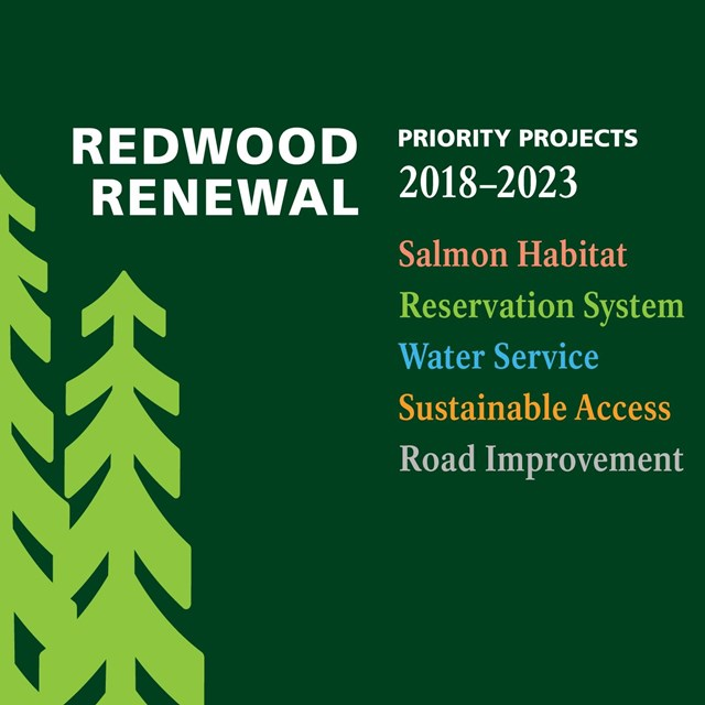 Redwood Renewal graphic featuring redwood tree silhouettes