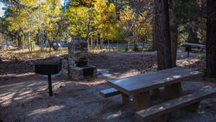 Picnic area at Upper Lehman Campground