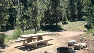 Campsite in Baker Creek Campground
