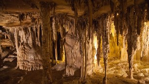 Stalactites, stalagmites and other formations in yellow light. Photo credit: Kee Ylp (flickr)