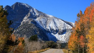 Wheeler Peak towers over the scenic roadway in fall.