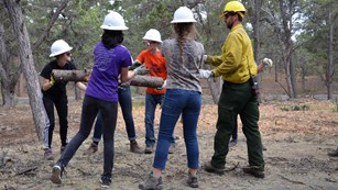 Students volunteering with the fire management team to help move a large branch.