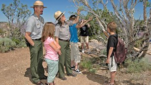 A couple of rangers and a few kids examine a cliff rose.