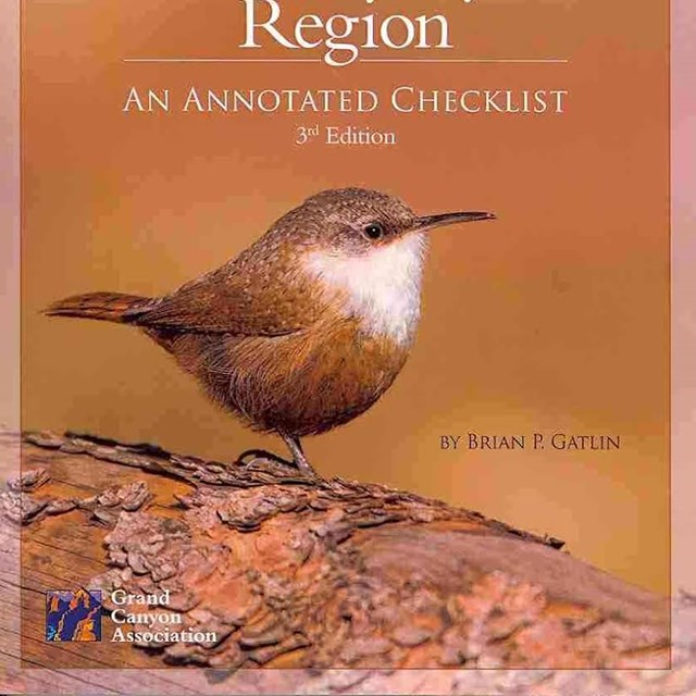 A photo of a book cover featuring a canyon wren.