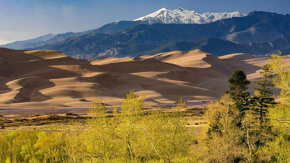 Dunes, Medano Creek, Cottonwood Grove, Forest, and Alpine Peak