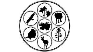 Silhouettes of plants and animals in Grand Teton National Park