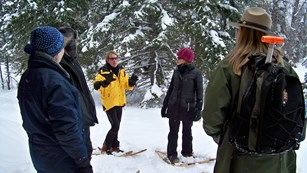 Visitors on wooden snowshoes with woman park ranger in front of dark green conifer trees.