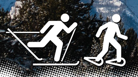 Cross-country skiing and Snowshoeing icons