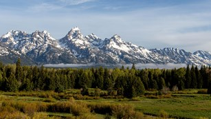Teton Range in spring with green trees and meadows, snow covering mountains with wisps of clouds