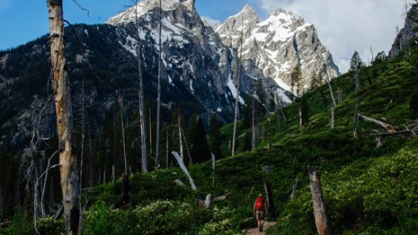 A hiker walks down a trail towards mountains.