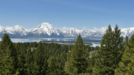 View of Jackson Lake and the Teton Range from the summit of Signal Mountain.