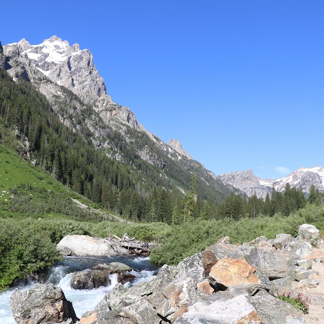 A trail follows a creek within a canyon between tall, rocky mountain peaks