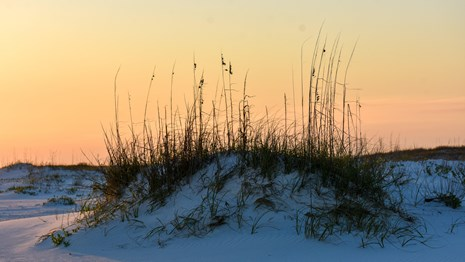Sunsets behind a dune on a white sand beach.