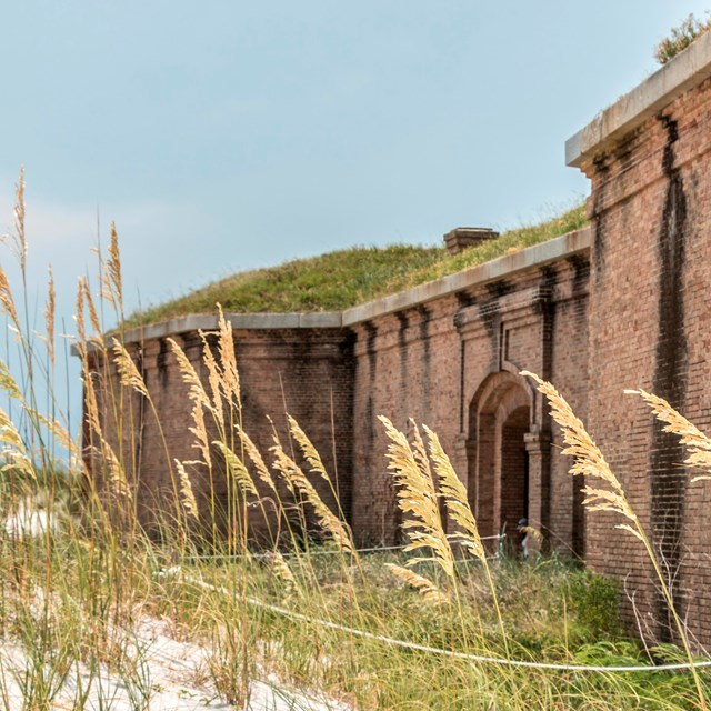 Sea oats stand in the foreground with a large masonry fort in the background.