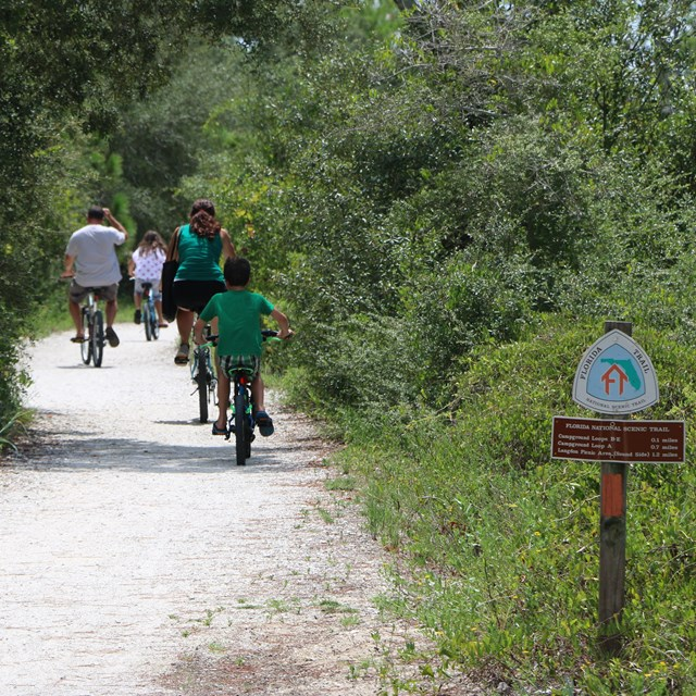 A group of cyclists ride away on a gravel trail between trees, a trail sign in the foreground