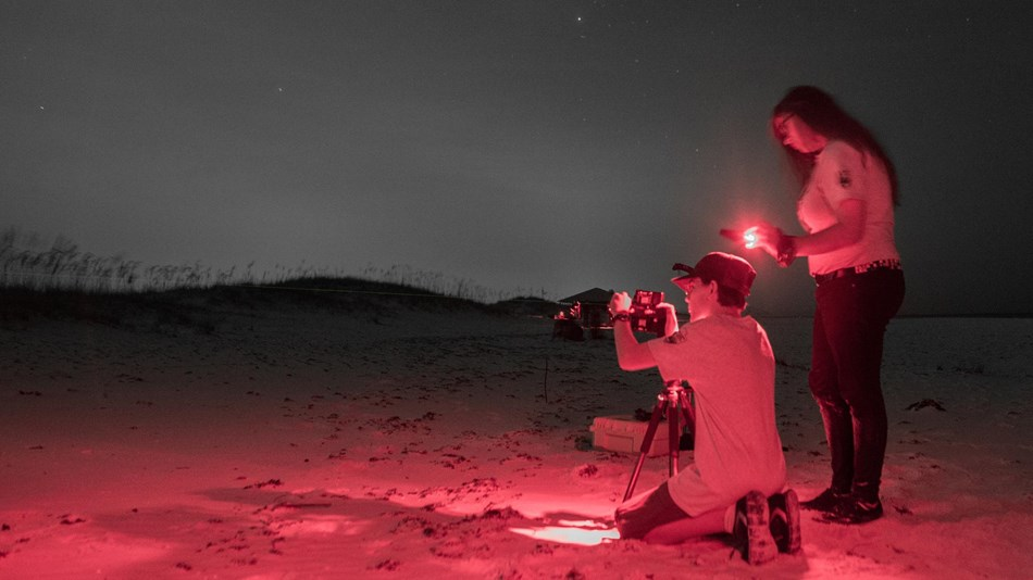 Two students take light measurements on a beach at night.