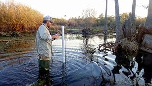 Biologist for the Gulf Coast Network installs a water level gauge in a small pond