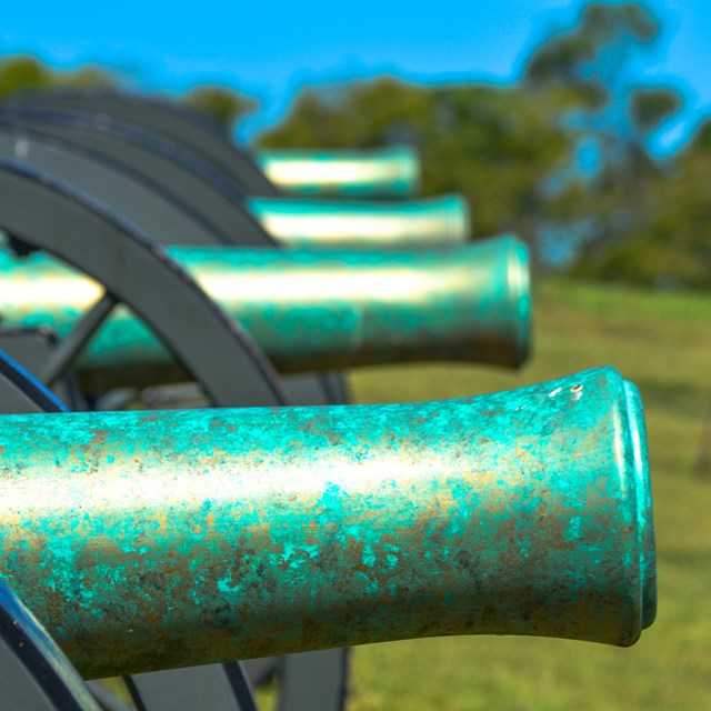 A row of antique canons that look rusted and bright green at Schoolhouse Ridge North.