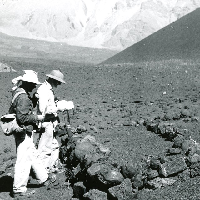 Anthropologists surveying archaeological site.