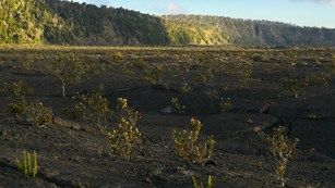 Floor of a volcanic crater at sunset