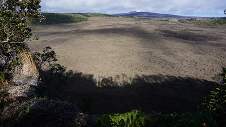 Floor of volcanic crater with forested rim