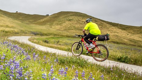 Biker riding up a hilly trail