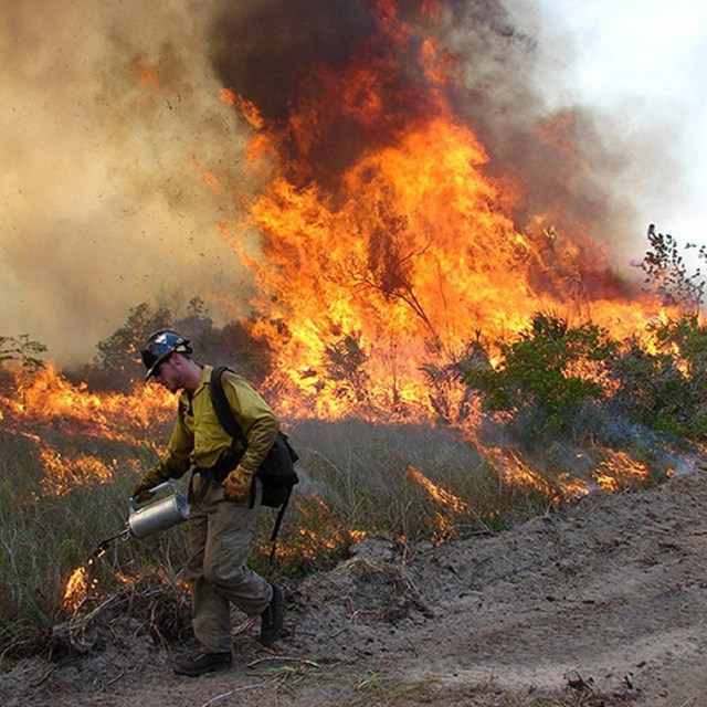 Fireman performing controlled burn