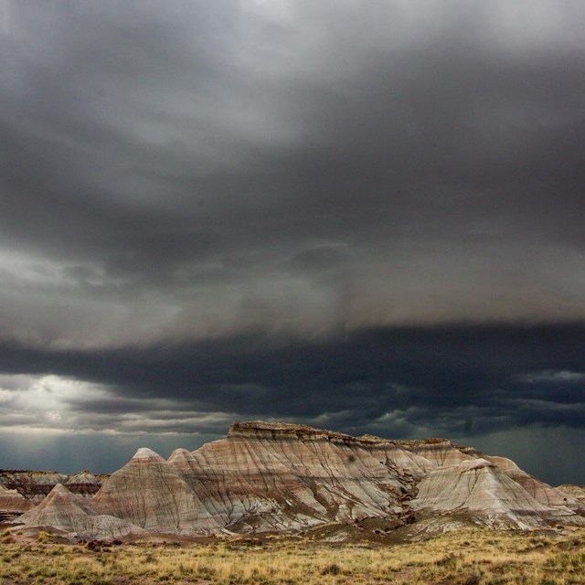 Dark clouds over Petrified Forest