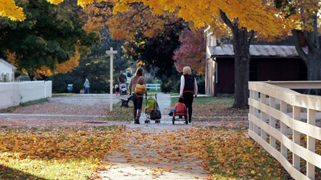 Mothers walk with their young children in a park with bright autumn foliage.