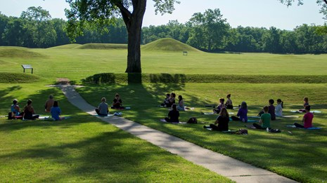 Several people sitting in the grass in the shade