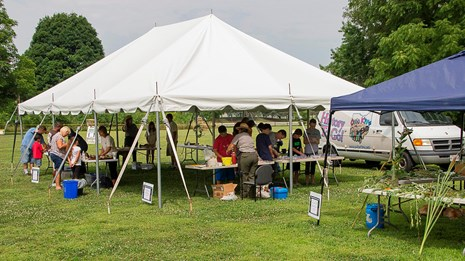 Visitors enjoying displays and activities during a park event