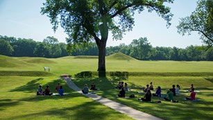 Several people sitting on the grass in front of mounds and a large tree