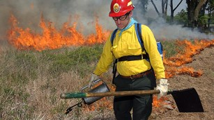 Prescribed Fire at Homestead
