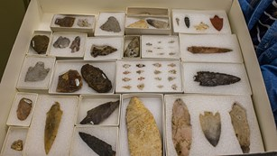 Dozens of boxes of various arrowheads and stone spearpoints sitting in a drawer.
