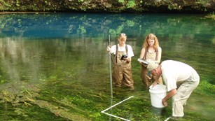 Photo of spring community sampling.