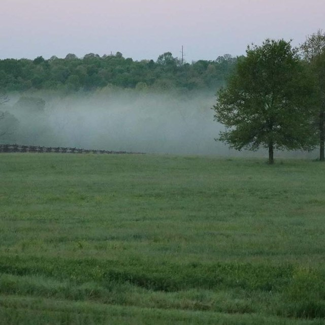 Photo of foggy morning at Wilson's Creek National Battlefield