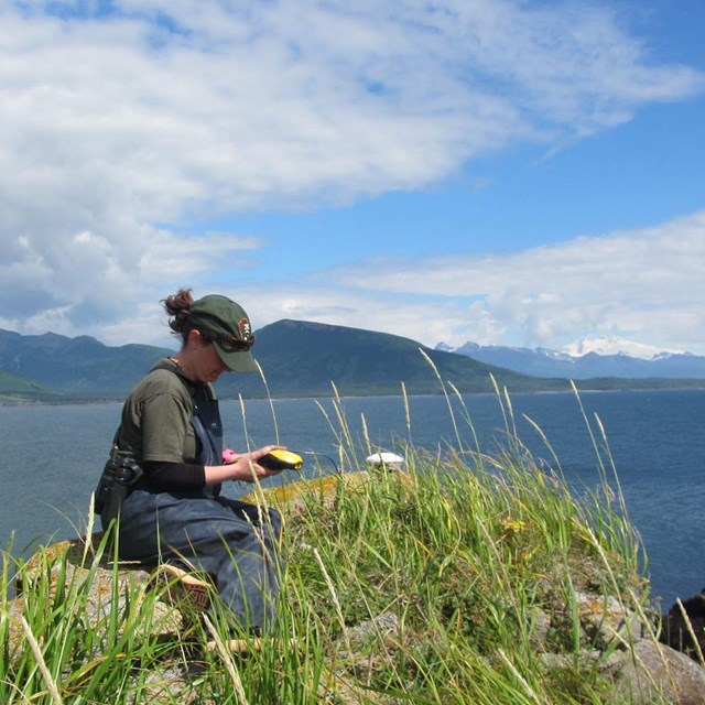 NPS employee overlooking a bay and entering data