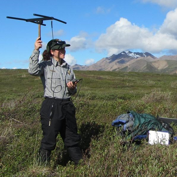 Park service scientist collecting data using audio detection equipment