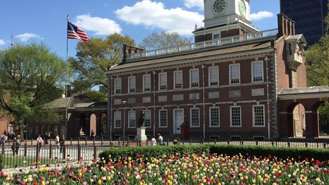 Color photo showing a garden of tulips in the foreground with Independence Hall visible behind.