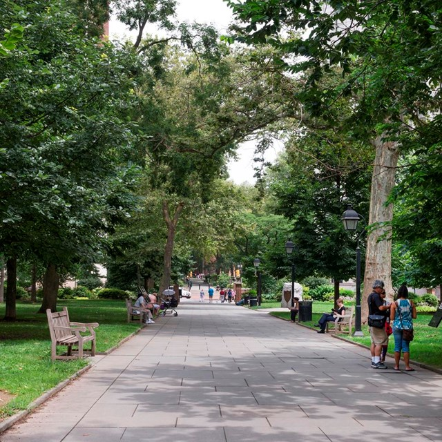 Color photo of a wide path lined with trees and benches.