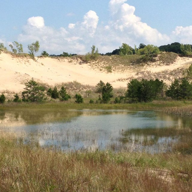 Discovering Indiana Dunes